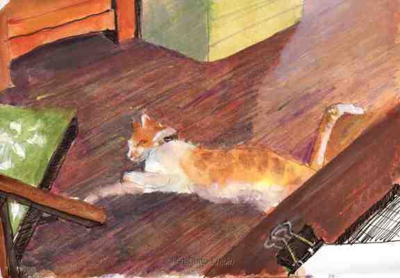 ace-202-cat-on-the-floor-161021-2-wm