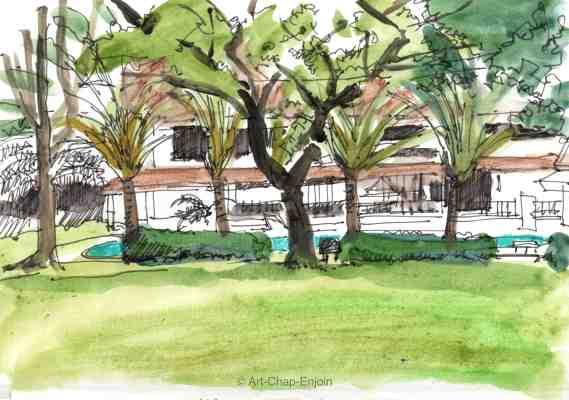 ace-320-tree-in-garden-170224-2-wm