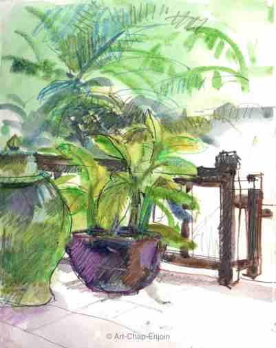ACE.419.pot plant 170616-2-wm