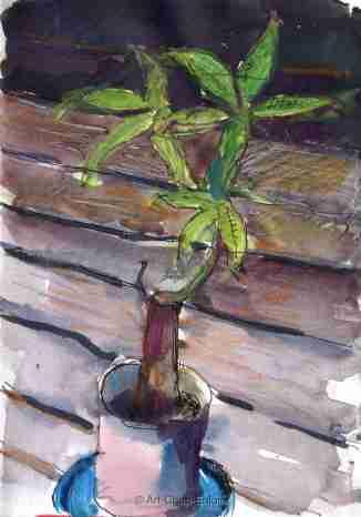 ACE.509-sad plant 170927-2-wm